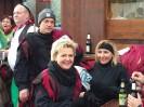Bilder vom Umzug in Scheidegg am 19.Februar_17