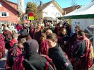 Bilder vom Umzug in Scheidegg am 19.Februar_2