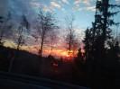 Bilder vom Umzug in Scheidegg am 19.Februar_43